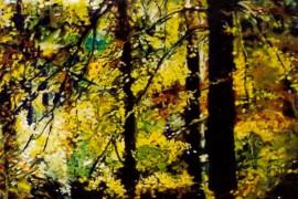 22./23.09.2017 | Malerei: Landschaft (Michael Partzsch)