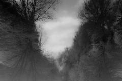 57_Thomas-Krieg_Motiv-in-schwarz-weiß