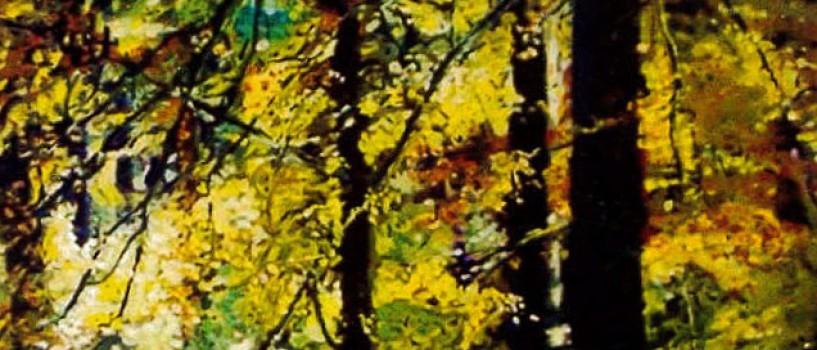 """Kunstkurs mit Michael Partzsch: """"Landschaft / Licht und Schatten"""" (19. – 21.06.2015)"""