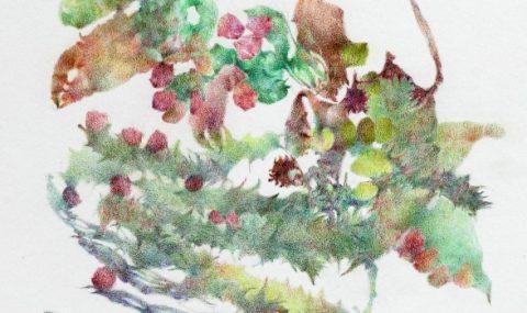 17. 09.–10.10.2021 | Kristin Finsterbusch: Druckgrafik und Fotografie
